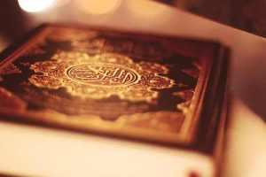 Quran-lgt